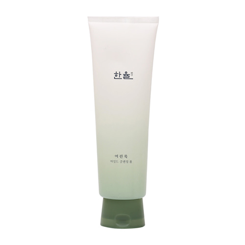 HanYul Pure Artemisia Mild Cleansing Foam 170ml