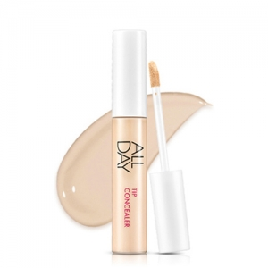 ARITAUM All Day Tip Concealer 10g