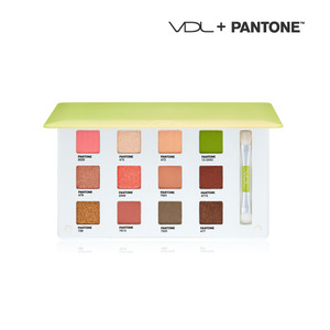 VDL EXPERT COLOR EYE BOOK 6.4 No.6 (pantone17)